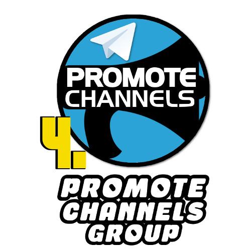 Best forex telegram group